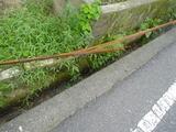 broken_rod
